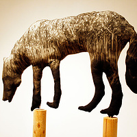 """Timberwolf III"" 2008. Cotton, charcoal, batting and douglas fir. 260 x 120 x 120 cm by Belinda Harrow"