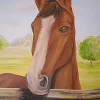 HORSE MURAL - DETAIL by Cindy Scaife