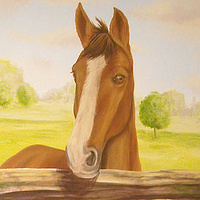 HORSE MURAL by Cindy Scaife