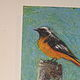 Acrylic painting Oriole and Blue Jay by Tina  Walter