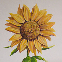 HORSE MURAL - SUNFLOWER by Cindy Scaife