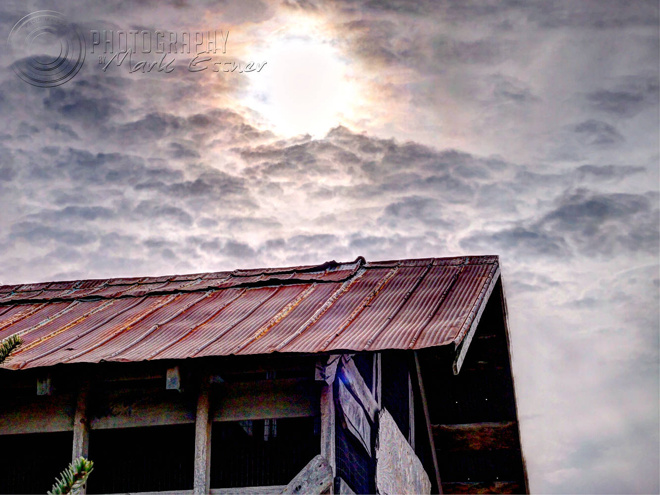 Print Tin Roof Rusted by Mark Essner