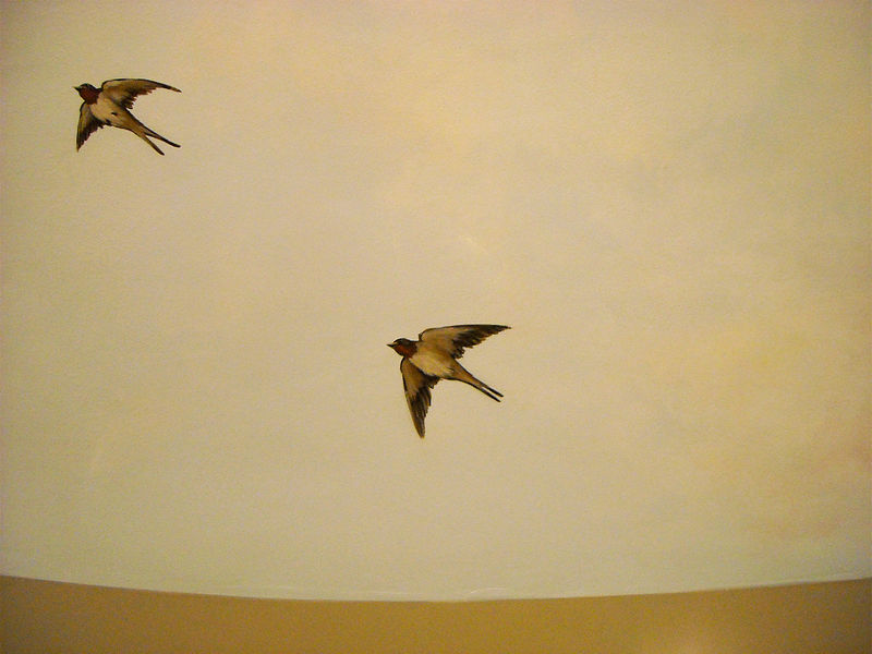 SKY MURAL - BIRDS by Cindy Scaife