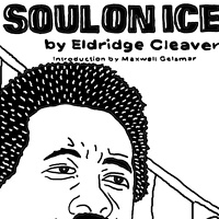 Soul On Ice by Phil Cummings