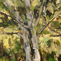 Oil painting Birch Tree by Edie Marshall