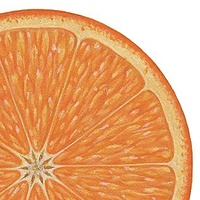 Print Orange Slice by Sue Ellen Brown