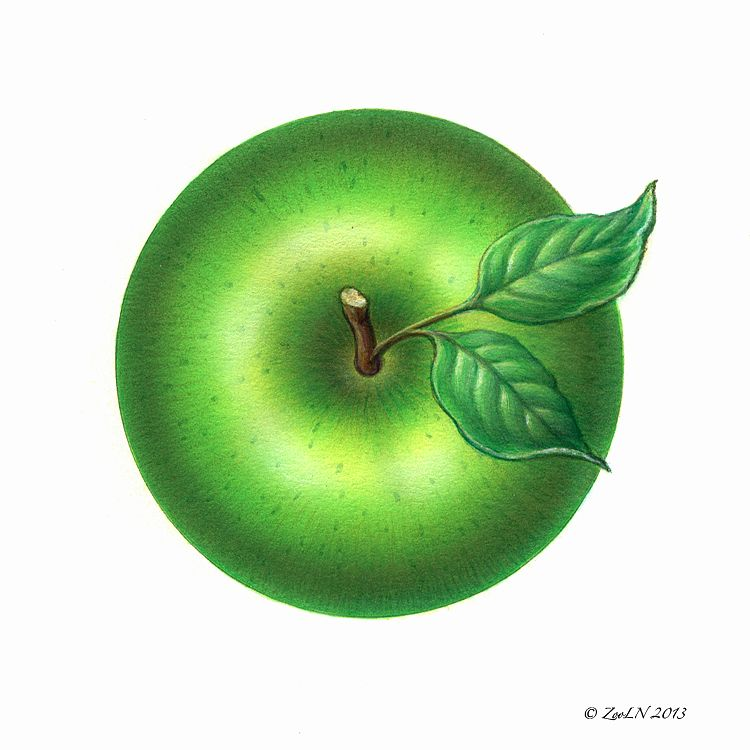 Print Apple Green by Sue Ellen Brown