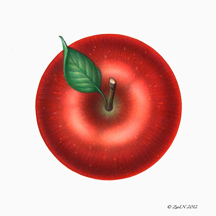 Print Apple Red by Sue Ellen Brown