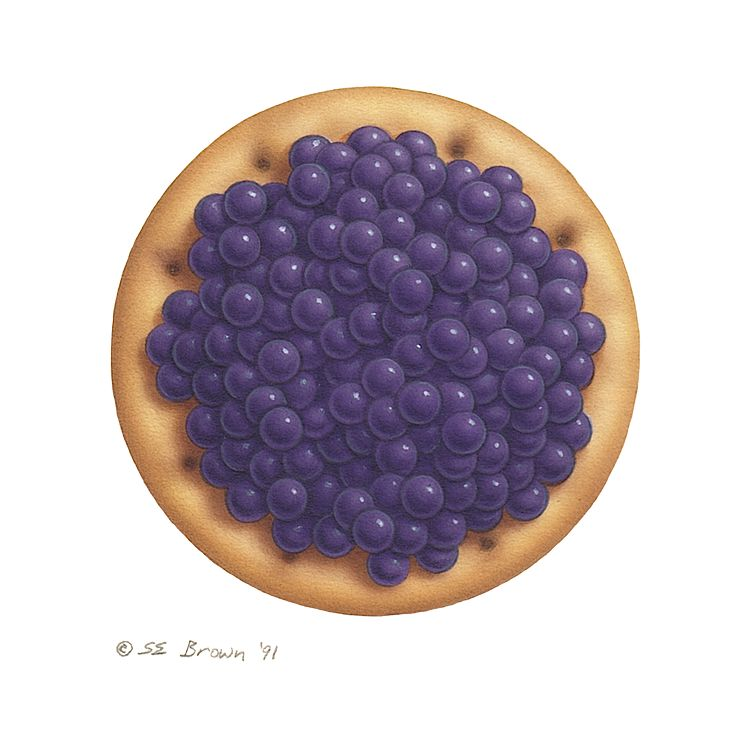 Print Caviar on an Oyster Cracker by Sue Ellen Brown