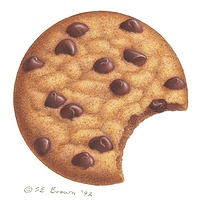 Print Cookie by Sue Ellen Brown