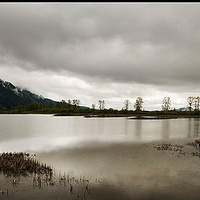 AAA_1767-70panorama Pitt Lake by Jim Friesen