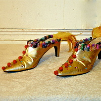 Pheasant Slippers by David Faulk
