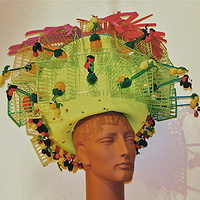 Strawberry Basket Hat by David Faulk