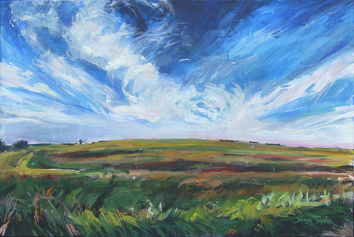 Acrylic painting Summer sky by Shawn Jordan