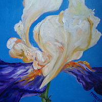 Oil painting Cream and blue iris by Michelle Marcotte