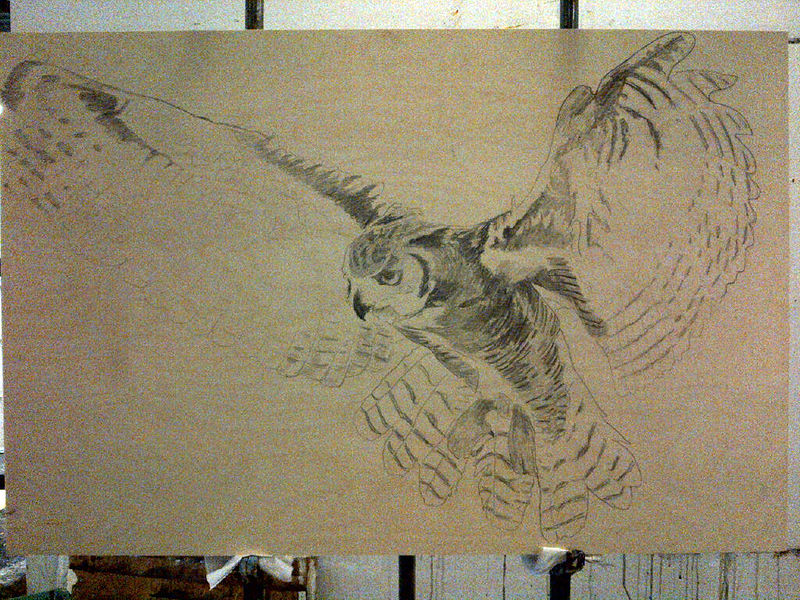 great horned owl drawn onto the birch by Belinda Harrow