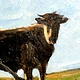 spring calf 10x10in oil by Michael Gaudreau