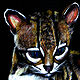 Margay (ES Series) by John Keaton