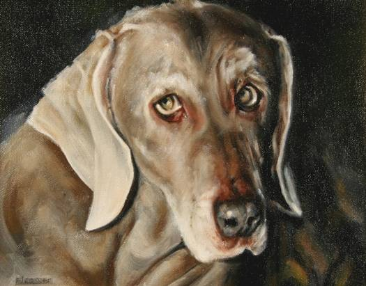 Oil painting Casey by Judith  Elsasser