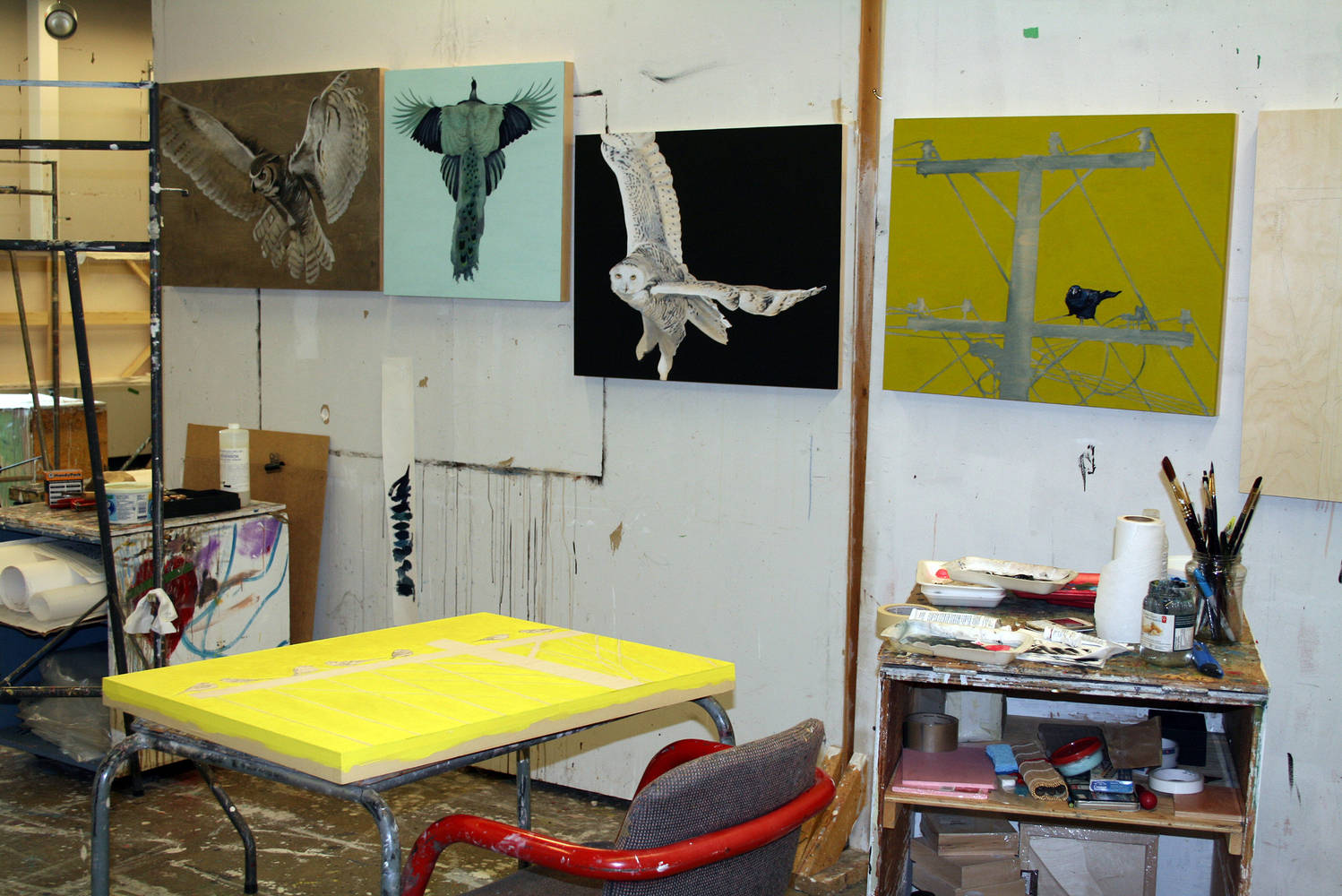 Studio by Belinda Harrow