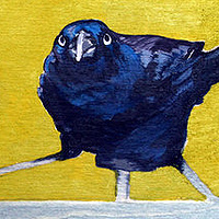Telephone Line Green Grackle Detail by Belinda Harrow