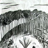 Drawing This Land 8 by Trevor Pye