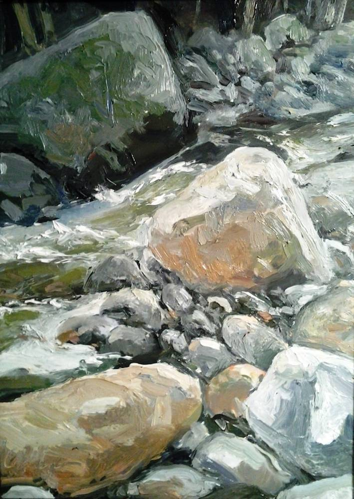Johns Brook Afternoon 9x12in  oil by Michael  Gaudreau