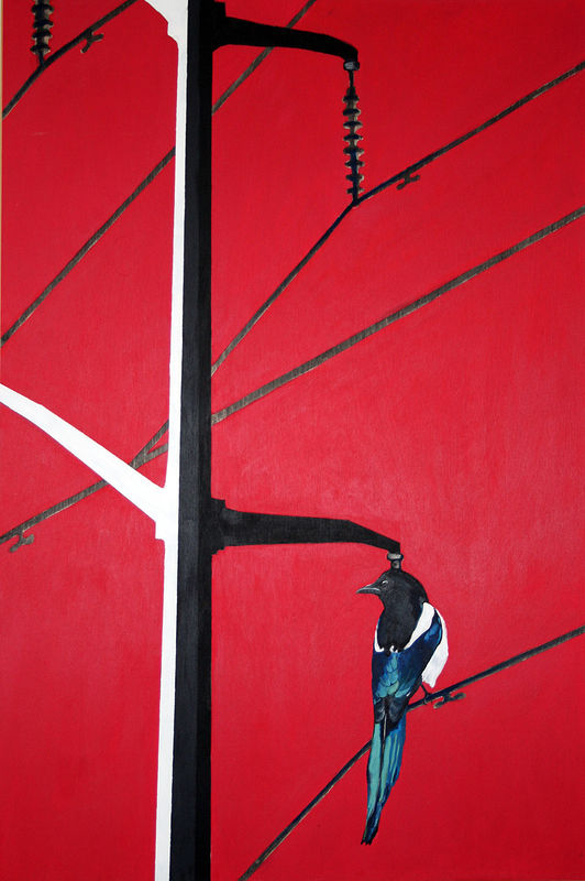 Acrylic painting Power Line Common Magpie by Belinda Harrow