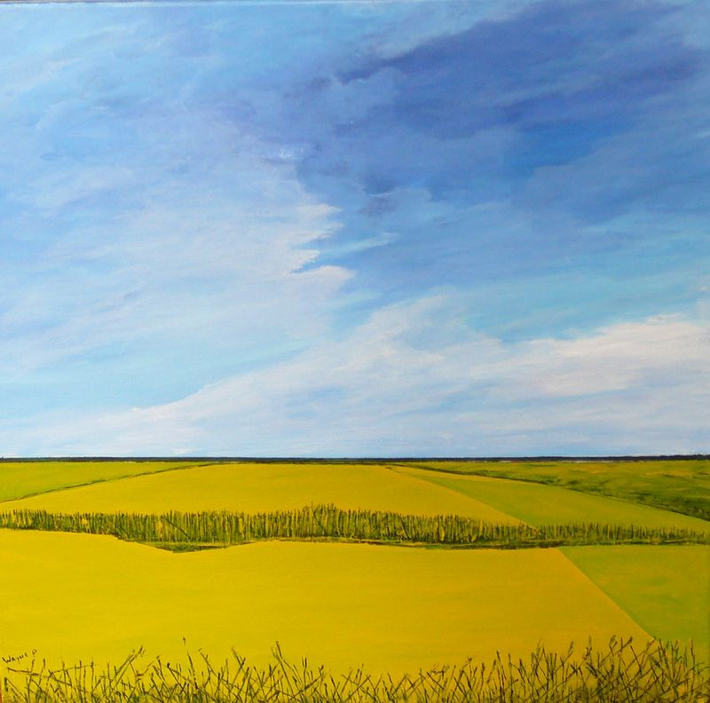 Oil painting CANOLA FIELD by Wayne Pitchko