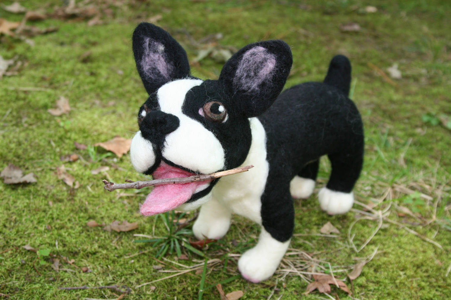 Sculpture Boston terrier by Valerie Johnson