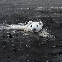 Oil painting Polar Bear #2, 2013 by David  Maxim