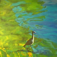 Oil painting bird in water by Timothy Innamorato