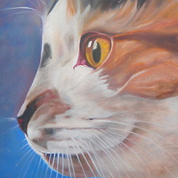 Oil painting gato by Timothy Innamorato