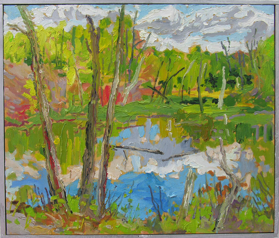 Spring Pond - 2006 by Peter Barron