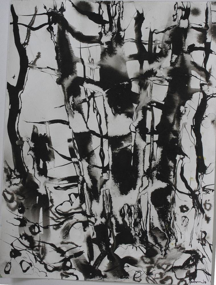 Spring Shoreline; ink '10 by Peter Barron