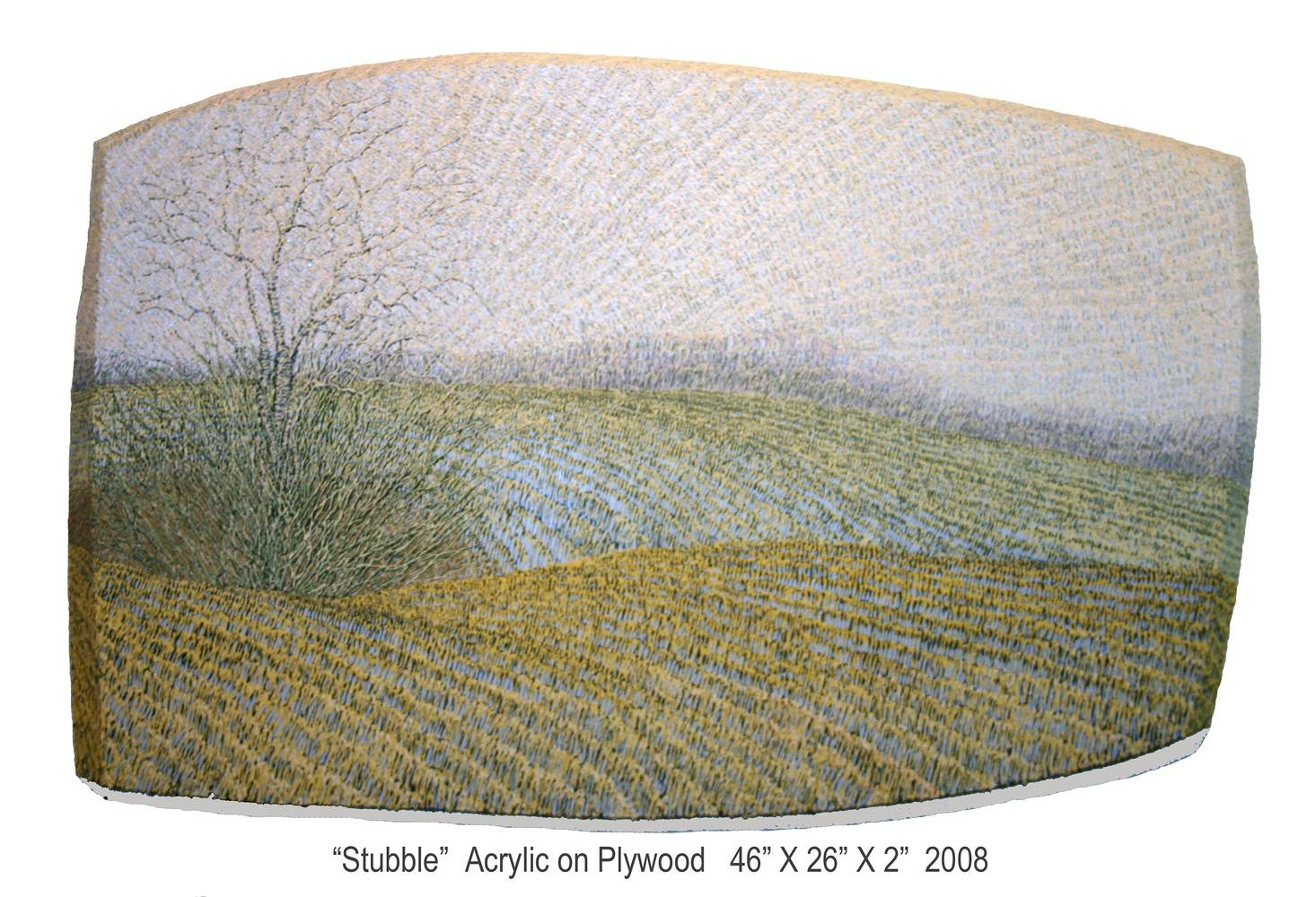 Stubble, 2008 by Douglas Moulden