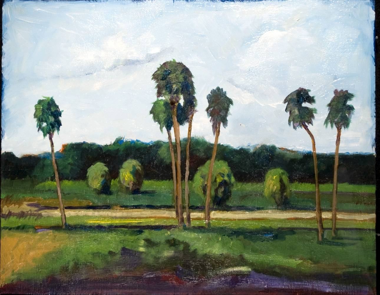 Oil painting Sarasota County by Paul Sershon