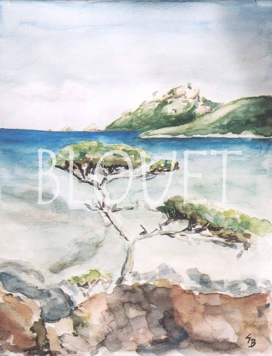 Watercolor Porquerolles by Sophie Dassonville