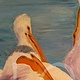 Oil painting Cherry Creek Pelicans by Sophie Dassonville