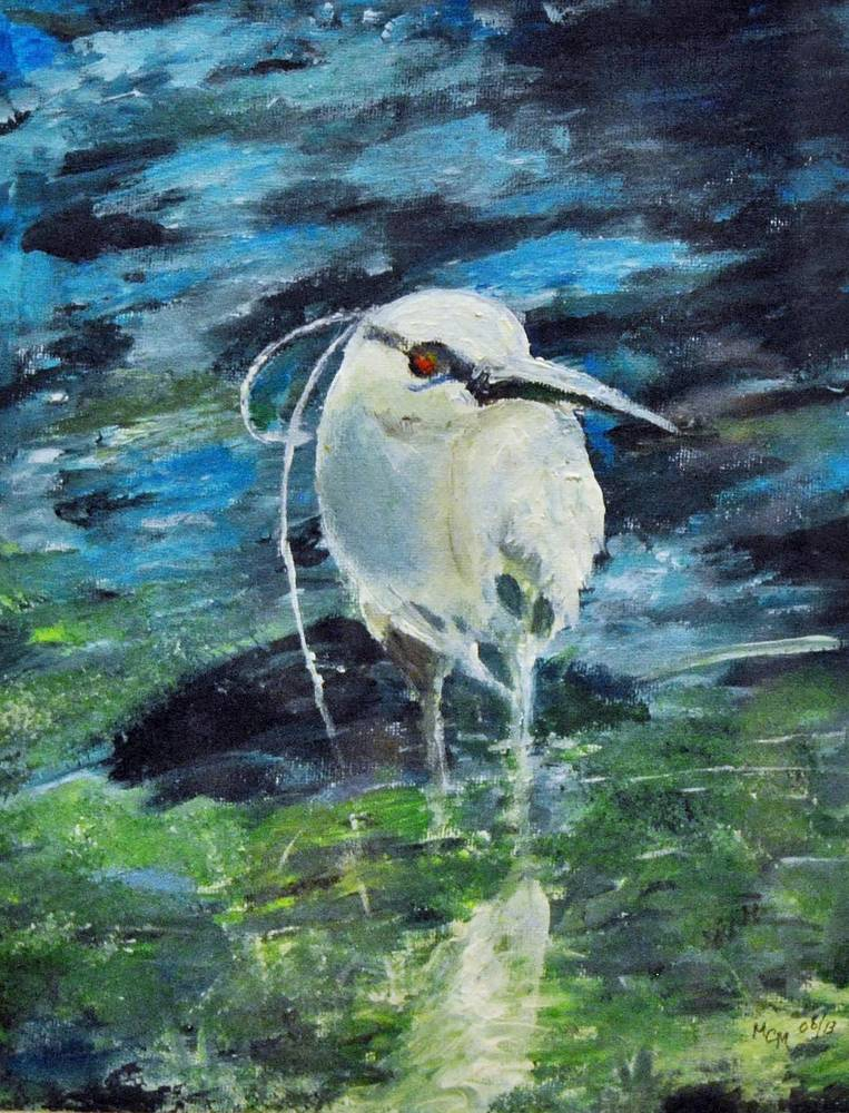 Acrylic painting Black Crowned Night Heron by Mary Chalmers Main
