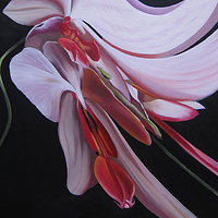 Oil painting Moth Orchid I by Robert Porazinski