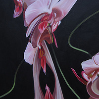Oil painting Moth Orchid II by Robert Porazinski
