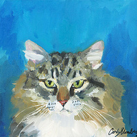 Print Rocky Kitty C046 by Cody Blomberg