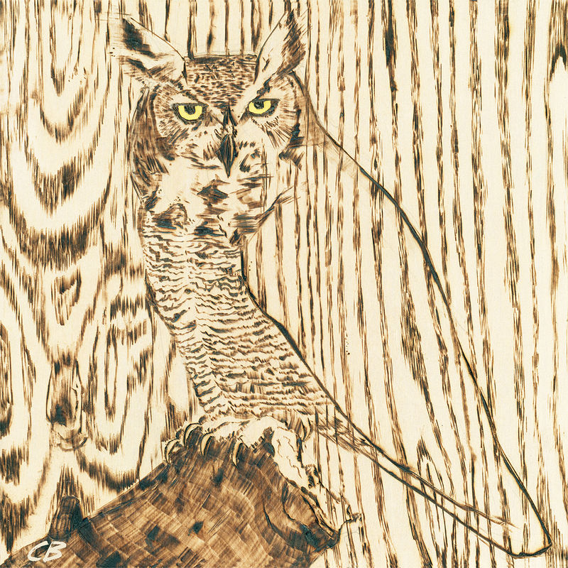 Print Hoened Owl C007 by Cody Blomberg