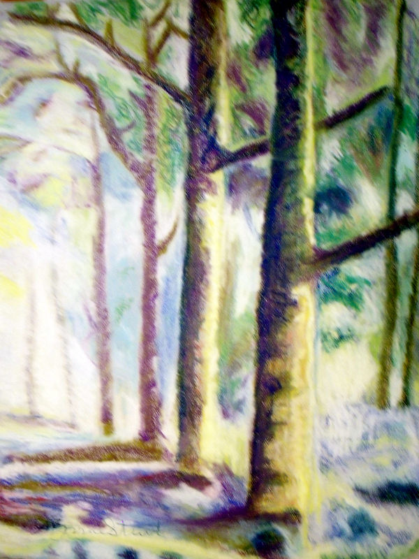 Drawing Forest for the Trees by Lynne Stewart