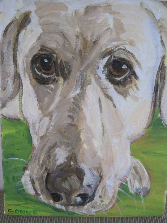 dog portrait by Carolyn Bonier