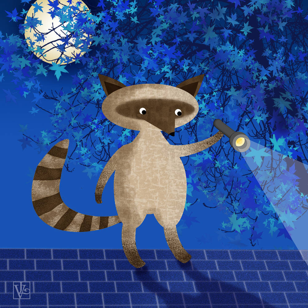 Rocky Raccoon by Valerie Lesiak