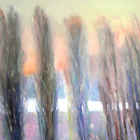 Poplars, France - Oil on canvas, 91 x 128cm by Jude Hotchkiss