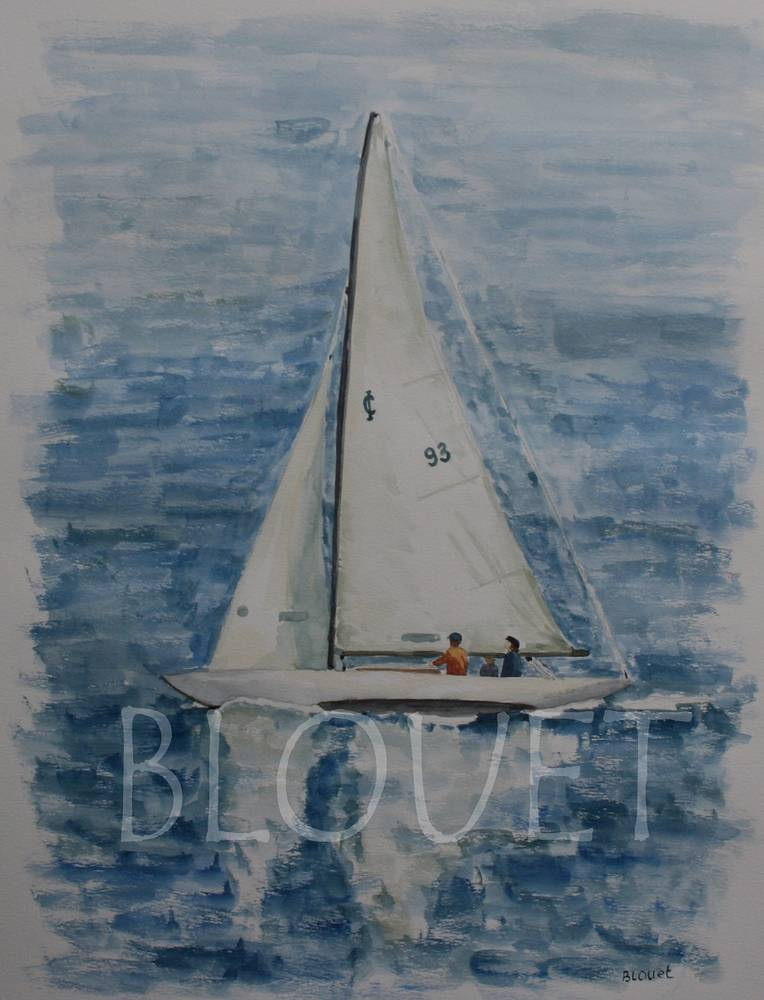 Sailing the Bay by Sophie Dassonville